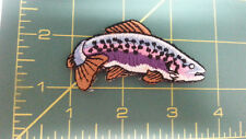 New Iron On Patch - Fish - Colorful fish - could be trout or salmon - Colorful