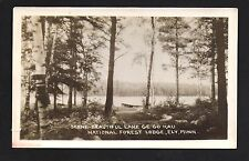 Ely Minnesota MN c1910 RPPC Lake GE GO KAU National forest Lodge Shores