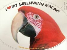 ON SALE! Greenwing Macaw Parrot Exotic Bird Vinyl Decal Bumper Sticker