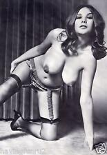 1960s Very Large breasts vintage nude Pinup Peggy Cooper 8 x 10 Photograph