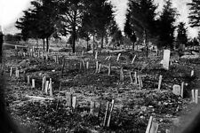 New 5x7 Civil War Photo: Soldiers Graves at Hollywood Cemetery, Richmond - 1865