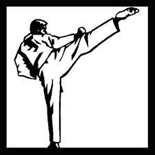 Basic Kyokushin Style Karate Training Martial Arts Instructional - DVD