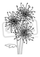 A7 'Chrysanthemum Flowers' Unmounted Rubber Stamp (SP003786)
