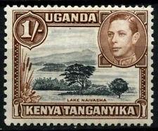 Kenya Uganda Tanganyika 1938-54 SG#145a 1s Black & Brown P13x11.75 MH #D31188