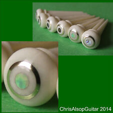 Guitar bone broches avec Abalone et laiton dot. 5,5 mm. pp012