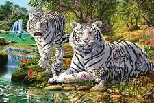 Hidden Images : White Tiger Clan - Maxi Poster 61 cm x 91.5cm (new & sealed)
