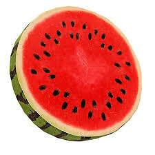 Quality Fashion Cute Cushion Fruit Plant Series Throw Pillow Watermelon