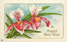 1907-15 Stecher Embossed Chromolithograph New Year PC Cattleya Orchids Unposted