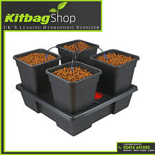 Wilma Small 4x11 Litre 4 Pot Complete Dripper System Hydroponics Grow Tent Kits