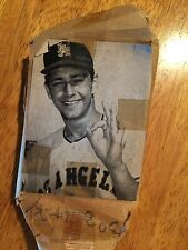Bo Belinsky No Hitter Baseball Pitcher Los Angles Angels Vintage Printers Block