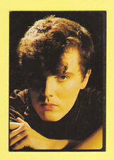 PEOPLE - PANINI - POP STARS - SMASH HITS COLLECTION  -  CURT  SMITH