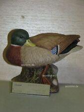 +# A015565_10 Goebel Archiv Muster Stockente Mallard Ente Duck 38-261