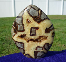 Happy Face Septarian Dragon Stone Quartz CRYSTAL Flame Point Fossil MADAGASCAR