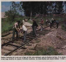 1981  --  PORTUGAL   ENTRETIEN DE LA LIGNE DE TRAIN PRES SENHORA DA HORA   3F526