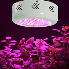 300W Grow Light Full Spectrum Hydro Veg Fruit Flower Indoor Plant Panel LED Lamp
