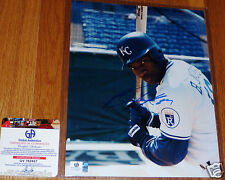 BO JACKSON AUTOGRAPHED SIGNED KC KANSAS CITY ROYALS 8x10 BATTING PHOTO GAI COA