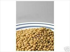 ORGANIC YELLOW SOYBEANS, SOY BEANS: SOY MILK, TOFU- NON-GMO-SPROUTING SEED-10 LB