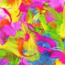 LUMINOSO Multicolore Piume Ideale per Arts & Craft PASQUA DECORAZIONE