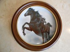 FRED STONE COLLECTOR PLATE The Black Stallion 1983 #4192 framed horse