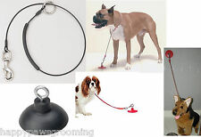 "Pet Dog Cat Grooming BATHING Bath SUCTION CUP & 36"" Noose/Loop Cable RESTRAINT"
