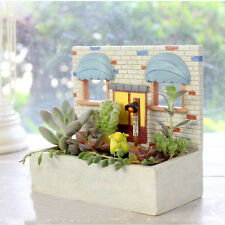 Resin Biscuit House Cactus Succulent Plant Flower Bed Pot Box Garden Planter