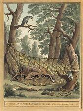 Chenu Oudry Crow Gacela Tortuga Rata Antiguo Arte Pintura cartel impresión bb5099a