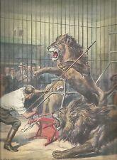 K0901 Domatore si esibisce in pericolosi giochi con alcuni leoni - Stampa antica