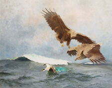 Liljefors BrunoTwo Sea Eagles And An Eider Duck Canvas 16 x 20    #3497