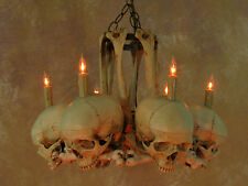 Skull Hip Bone Chandelier, Halloween Prop, Human Skeletons, NEW