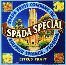 Sulphur Springs Florida Spada Special Orange Citrus Fruit Crate Label Art Print