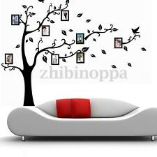 Family Tree Bird Photo Frame Room Wall Quotes Stickers Mural Art Decal Wallpaper