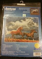 Spirit of the Horse Janlynn new sealed counted cross-stitch kit 14 x 11