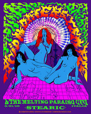 Acid Mothers Temple concert poster Milan Italy, rare 18 x 24