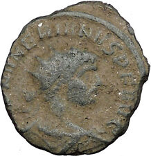 NUMERIAN son of Carus brother of Carinus 283AD Ancient Roman Coin Wealth  i33071