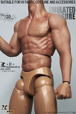 """ZC Toys 1/6 Muscular Figure Body Seamless Arms 3.0 Fit For 12"""" Hot Toys Head"""