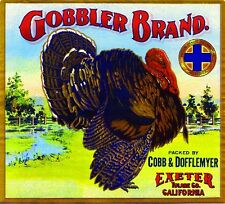 Exeter Gobbler Turkey Thanksgiving Orange Citrus Fruit Crate Label Art Print