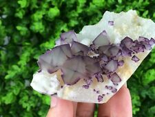 1LB Purple and Green Octahedral Fluorite cluster on Matrix *China