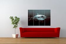 PHOTO NATURE ANIMAL FISH GREAT WHITE SHARK COOL GIANT ART PRINT POSTER NOR0944