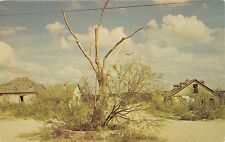 LANGTRY TEXAS THE HANGING TREE~JUDGE ROY BEAN~LAW WEST OF PECOS POSTCARD 1960s