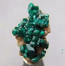 Cool  Gem Dioptase crystal cluster, Altyn Tube  Mine ,Kazakhstanl  , 33 mm