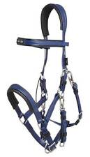 Zilco NEW Stainless Steel with Padding Marathon Bridle