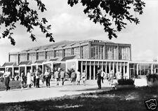 AK, Berlin Lichtenberg, Tierpark Friedrichsfelde, Alfred-Brehm-Haus, 1964