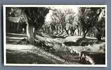 China, French Concession in Tientsin Vintage silver print. Vintage China. 中国葡萄酒.
