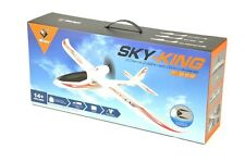 RC 4 Kanal Flugzeug F959 Elektro Glider 2,4Ghz - RTF Ready to Fly RC Plane