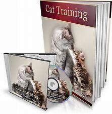 CAT la formazione è il tuo gatto rovinando la mobili? allora non si TRENO buona condizione RIVENDITA