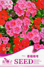 1 Pack 5 Phlox Seeds Phlox Drummondii Phlox Incense Garden Flowers A209
