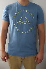 Hollister Blue Large T-Shirt by Abercrombie & Fitch size L