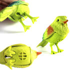 Creative Gift Natural Bird Singing Voice Sound Control Activate Kid Child Toy