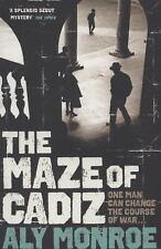 The Maze of Cadiz (Peter Cotton), Monroe, Aly, New Books