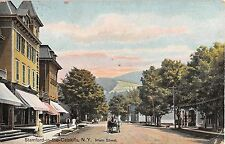 1909 Stores Main St. Stamford in the Catskills NY post card Delaware County